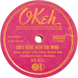 Big Bill Broonzy, She's Gone With The Wind, Okeh 06630